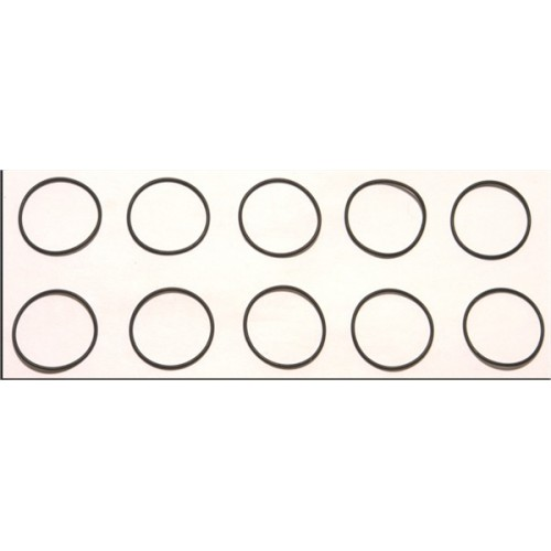 CORALLY O-RINGS 20.5 X 1.0 MM (10)